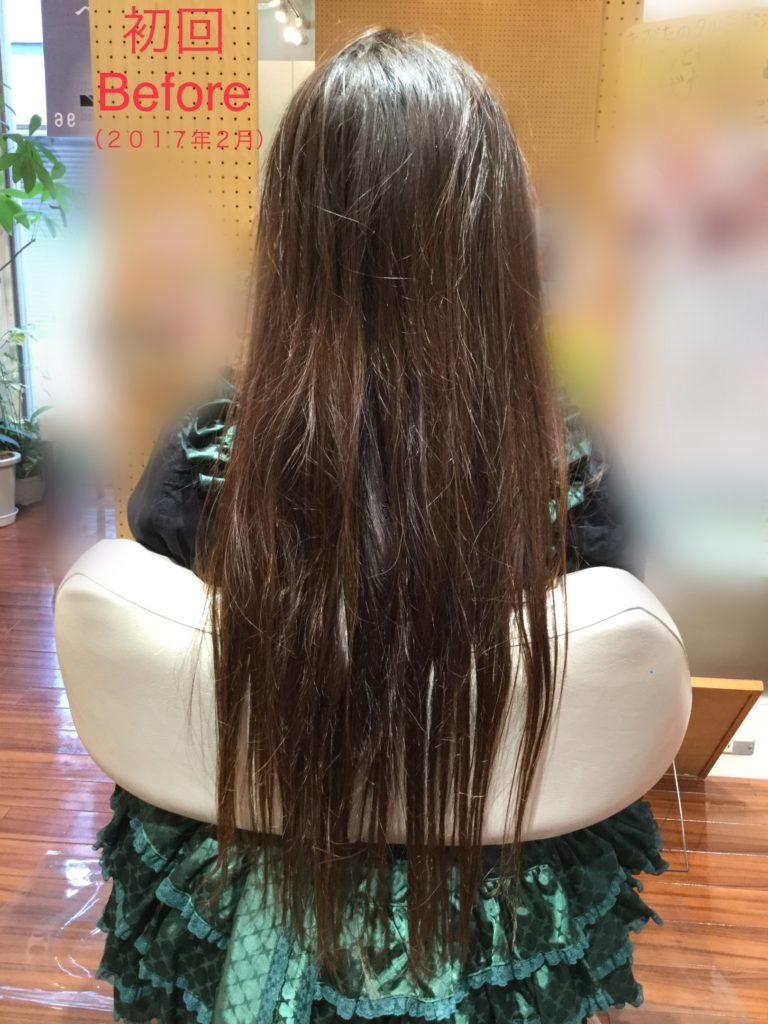 K様の髪質感改善プログラム(更新中)