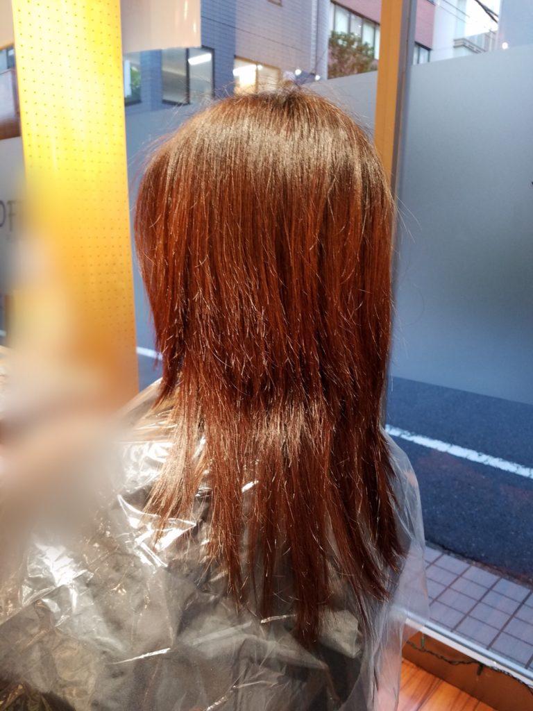 Y様のツヤ髪質感改善プログラム。