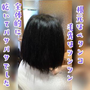 いくつもの髪の悩みを同時に解決