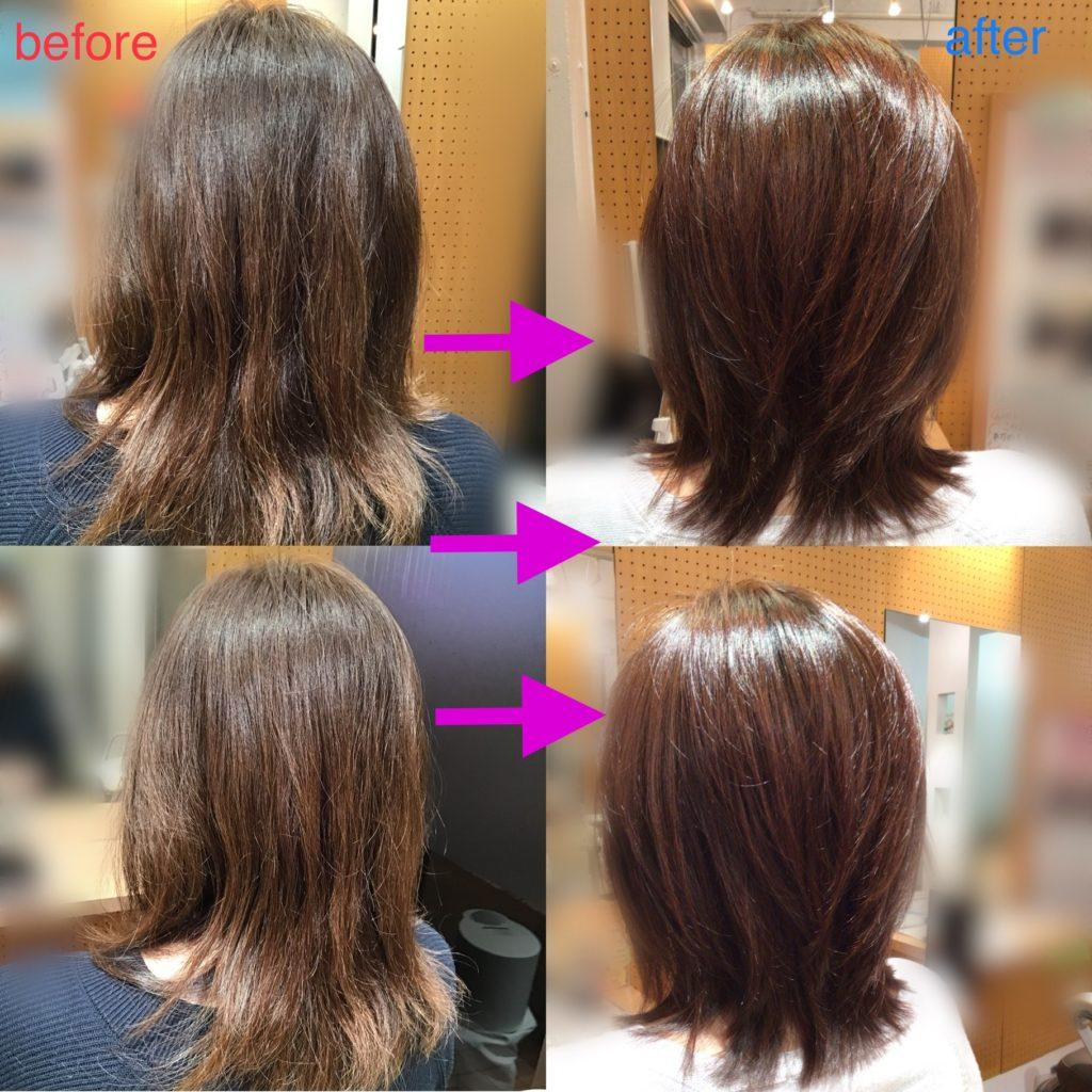 こんなに変わった!髪体力向上プログラム‼️