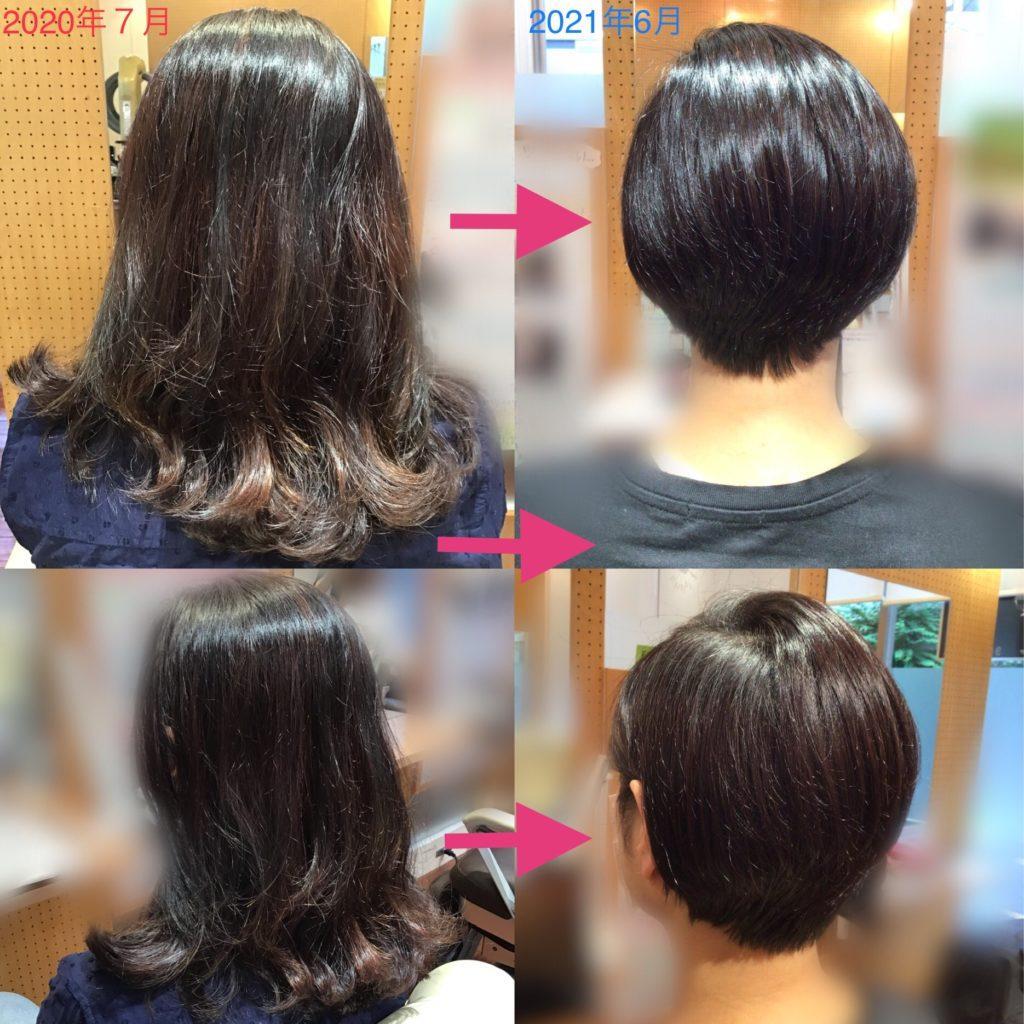 Y様の髪体力向上プログラム歴(更新)