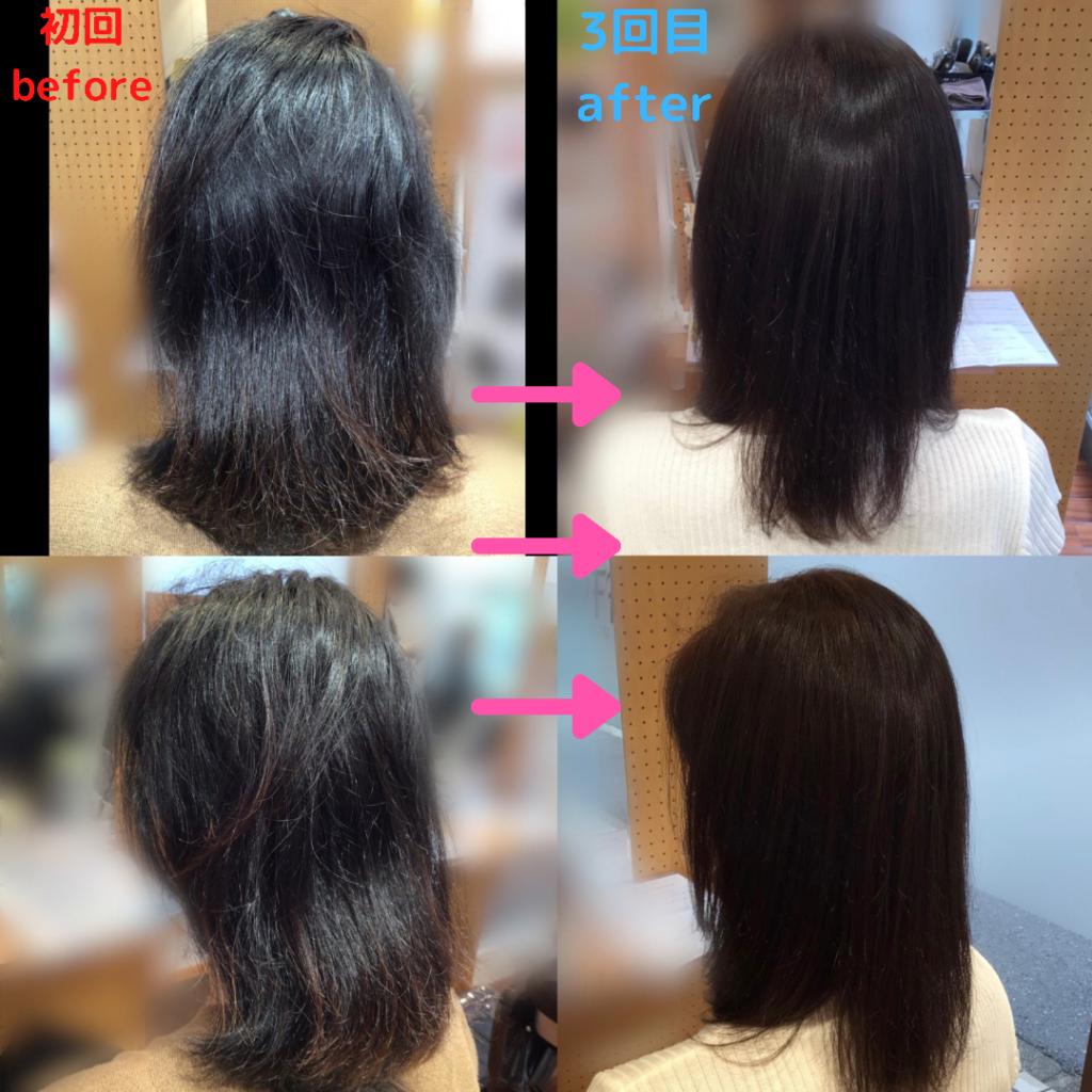 髪体力向上プログラムでツヤツヤをキープ!!(更新)